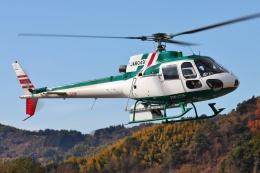 ブルーさんさんが、静岡ヘリポートで撮影したアカギヘリコプター AS350B2 Ecureuilの航空フォト(飛行機 写真・画像)