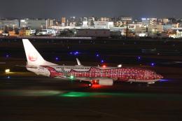 えむでぃ〜さんが、福岡空港で撮影した日本トランスオーシャン航空 737-8Q3の航空フォト(飛行機 写真・画像)