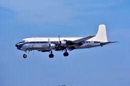 パール大山さんが、マイアミ国際空港で撮影したアビアンカ・グアテマラ DC-6A(C)の航空フォト(飛行機 写真・画像)