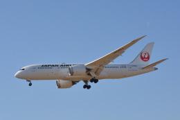 きつねさんが、福岡空港で撮影した日本航空 787-8 Dreamlinerの航空フォト(飛行機 写真・画像)