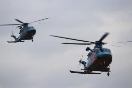 パピヨンさんが、東京ヘリポートで撮影した警視庁 EC155B1の航空フォト(飛行機 写真・画像)