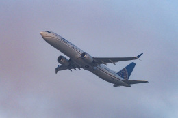 LAX Spotterさんが、ロサンゼルス国際空港で撮影したユナイテッド航空 737-9-MAXの航空フォト(飛行機 写真・画像)