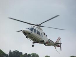 チダ.ニックさんが、静岡ヘリポートで撮影した鹿児島国際航空 A109E Powerの航空フォト(飛行機 写真・画像)