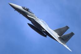 levo2735さんが、岐阜基地で撮影した航空自衛隊 F-15J Kai Eagleの航空フォト(飛行機 写真・画像)