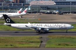 たみぃさんが、羽田空港で撮影したルフトハンザドイツ航空 A340-313Xの航空フォト(飛行機 写真・画像)