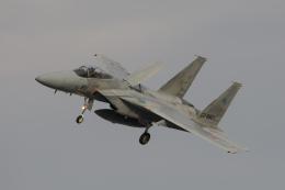 kuraykiさんが、岐阜基地で撮影した航空自衛隊 F-15J Eagleの航空フォト(飛行機 写真・画像)