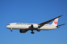 赤ちんさんが、成田国際空港で撮影した日本航空 787-9の航空フォト(飛行機 写真・画像)