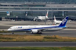 T.Sazenさんが、羽田空港で撮影した全日空 787-9の航空フォト(飛行機 写真・画像)
