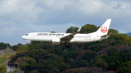 FlyingMonkeyさんが、福岡空港で撮影した日本航空 737-846の航空フォト(飛行機 写真・画像)