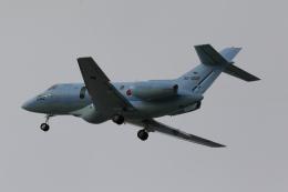 やまけんさんが、仙台空港で撮影した航空自衛隊 U-125A (BAe-125-800SM)の航空フォト(飛行機 写真・画像)