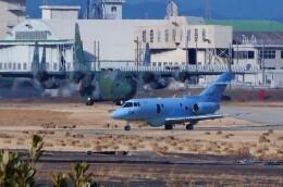 ハミングバードさんが、名古屋飛行場で撮影した航空自衛隊 U-125A(Hawker 800)の航空フォト(飛行機 写真・画像)