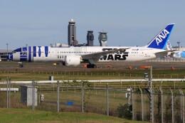 メンチカツさんが、成田国際空港で撮影した全日空 787-9の航空フォト(飛行機 写真・画像)