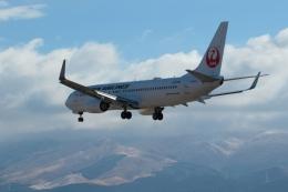 ko_zo.k@KMJさんが、熊本空港で撮影した日本航空 737-846の航空フォト(飛行機 写真・画像)