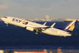 三軒 那乃さんが、羽田空港で撮影したスカイマーク 737-8ALの航空フォト(飛行機 写真・画像)