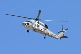 masahiさんが、厚木飛行場で撮影した海上自衛隊 SH-60Jの航空フォト(飛行機 写真・画像)
