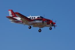 ぼくちゃんさんが、厚木飛行場で撮影した海上自衛隊 TC-90 King Air (C90)の航空フォト(飛行機 写真・画像)