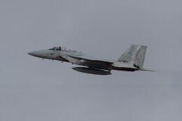 Koenig117さんが、岐阜基地で撮影した航空自衛隊 F-15J Eagleの航空フォト(飛行機 写真・画像)