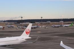 Hiro-hiroさんが、成田国際空港で撮影したジェットスター・ジャパン A320-232の航空フォト(飛行機 写真・画像)