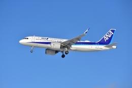 E-75さんが、函館空港で撮影した全日空 A320-271Nの航空フォト(飛行機 写真・画像)