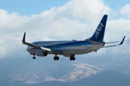 ko_zo.k@KMJさんが、熊本空港で撮影した全日空 737-881の航空フォト(飛行機 写真・画像)