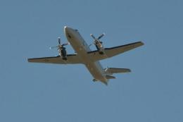 きつねさんが、福岡空港で撮影したアメリカ空軍 C-12J (1900C-1)の航空フォト(飛行機 写真・画像)