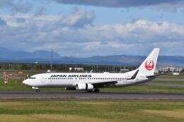 hachiさんが、新千歳空港で撮影した日本航空 737-846の航空フォト(飛行機 写真・画像)