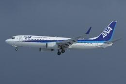 デデゴンさんが、石見空港で撮影した全日空 737-881の航空フォト(飛行機 写真・画像)