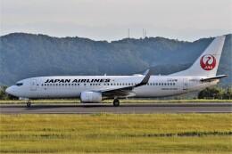 鉄バスさんが、広島空港で撮影した日本航空 737-846の航空フォト(飛行機 写真・画像)