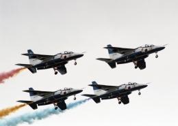 元青森人さんが、千歳基地で撮影した航空自衛隊 T-4の航空フォト(飛行機 写真・画像)
