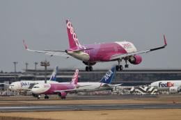 飛行機ゆうちゃんさんが、成田国際空港で撮影したピーチ A320-214の航空フォト(飛行機 写真・画像)
