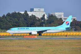 ポン太さんが、成田国際空港で撮影した大韓航空 737-9B5の航空フォト(飛行機 写真・画像)