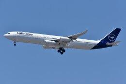 islandsさんが、羽田空港で撮影したルフトハンザドイツ航空 A340-313Xの航空フォト(飛行機 写真・画像)