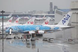 OS52さんが、成田国際空港で撮影した全日空 A380-841の航空フォト(飛行機 写真・画像)