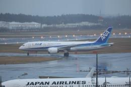 OS52さんが、成田国際空港で撮影した全日空 787-8 Dreamlinerの航空フォト(飛行機 写真・画像)