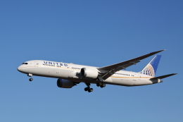 赤ちんさんが、成田国際空港で撮影したユナイテッド航空 787-9の航空フォト(飛行機 写真・画像)