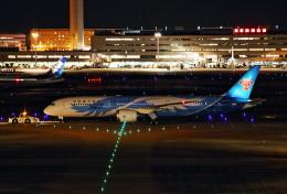 MOHICANさんが、羽田空港で撮影した中国南方航空 787-9の航空フォト(飛行機 写真・画像)
