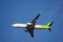 JA8037さんが、成田国際空港で撮影した春秋航空日本 737-8ALの航空フォト(飛行機 写真・画像)