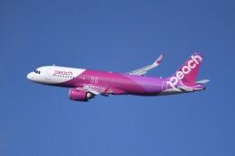 仙台空港 - Sendai Airport [SDJ/RJSS]で撮影されたピーチ - Peach [MM/APJ]の航空機写真