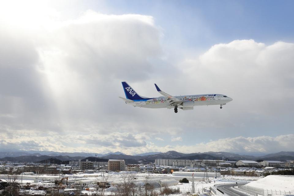 julyさんの全日空 Boeing 737-800 (JA85AN) 航空フォト
