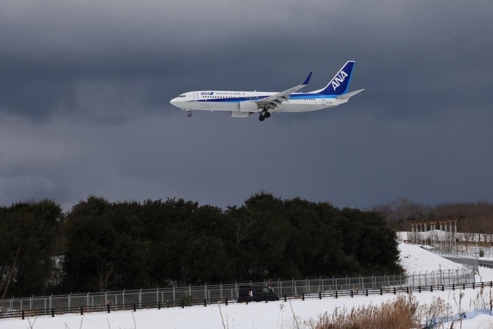 julyさんの全日空 Boeing 737-800 (JA74AN) 航空フォト