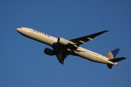 赤ちんさんが、成田国際空港で撮影したユナイテッド航空 777-322/ERの航空フォト(飛行機 写真・画像)