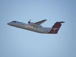 G-BNLYさんが、シドニー国際空港で撮影したカンタスリンク DHC-8-315Q Dash 8の航空フォト(飛行機 写真・画像)