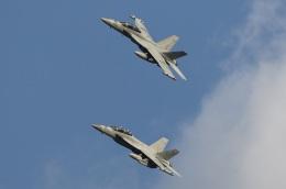 isiさんが、厚木飛行場で撮影したアメリカ海軍 EA-18G Growlerの航空フォト(飛行機 写真・画像)