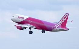 CL&CLさんが、奄美空港で撮影したピーチ A320-214の航空フォト(飛行機 写真・画像)