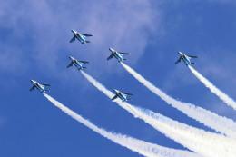 szkkjさんが、入間飛行場で撮影した航空自衛隊 T-4の航空フォト(飛行機 写真・画像)