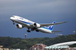 MOHICANさんが、福岡空港で撮影した全日空 787-9の航空フォト(飛行機 写真・画像)