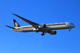 kenzy201さんが、成田国際空港で撮影したシンガポール航空 787-10の航空フォト(飛行機 写真・画像)