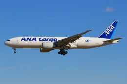 みるぽんたさんが、成田国際空港で撮影した全日空 777-F81の航空フォト(飛行機 写真・画像)