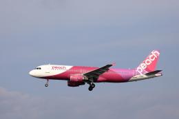 TAKAHIDEさんが、新潟空港で撮影したピーチ A320-214の航空フォト(飛行機 写真・画像)