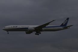 Sharp Fukudaさんが、成田国際空港で撮影した全日空 777-381/ERの航空フォト(飛行機 写真・画像)